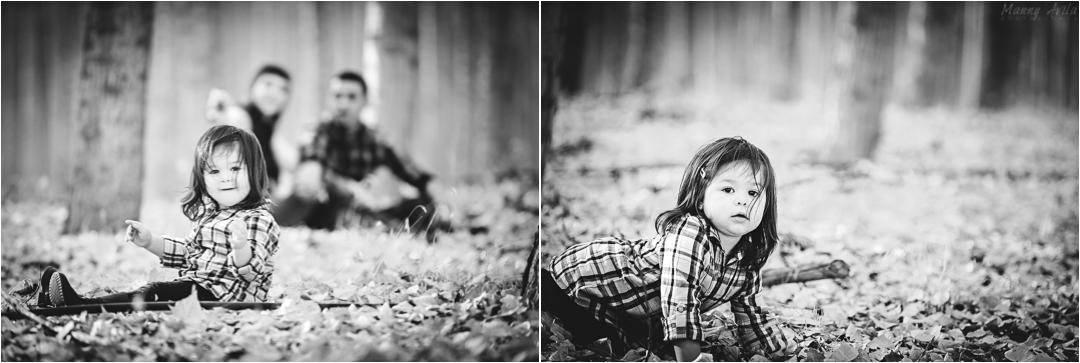 collage5c.jpg