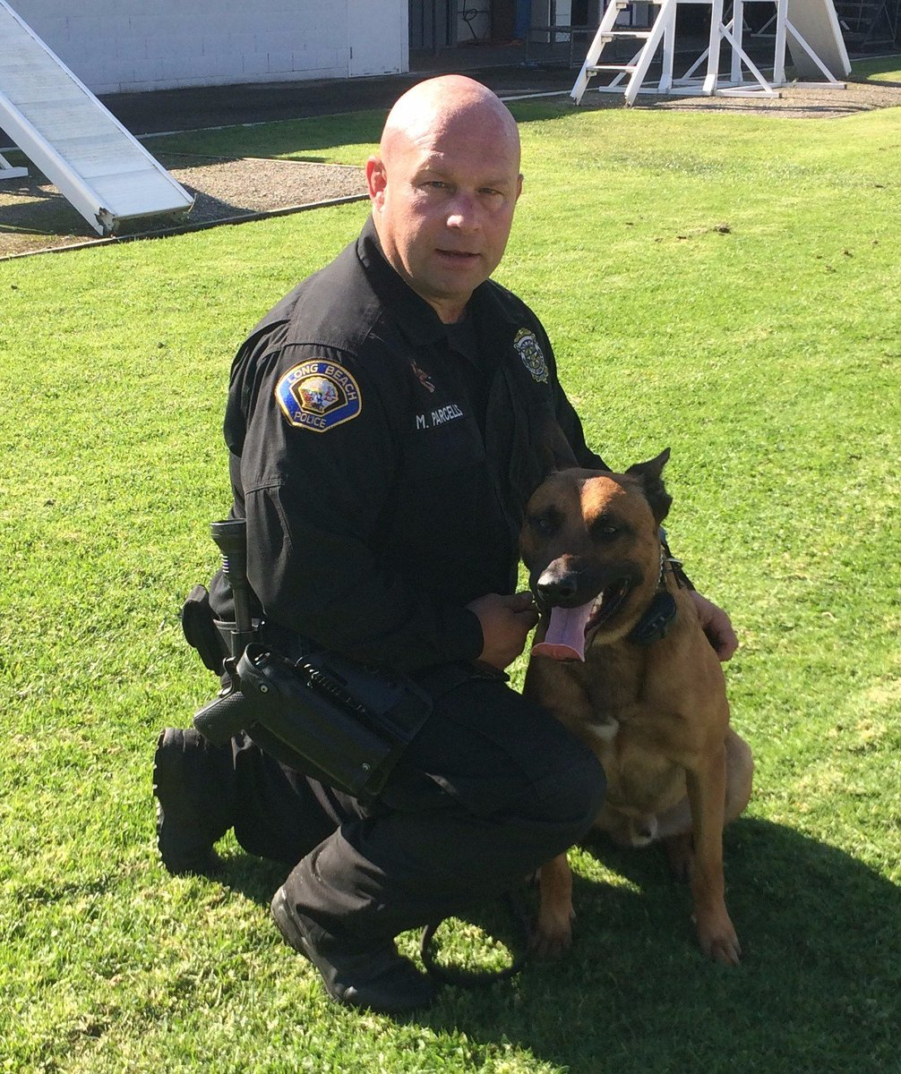Lieutenant Michael Pennino, LBPD Narcotics Division