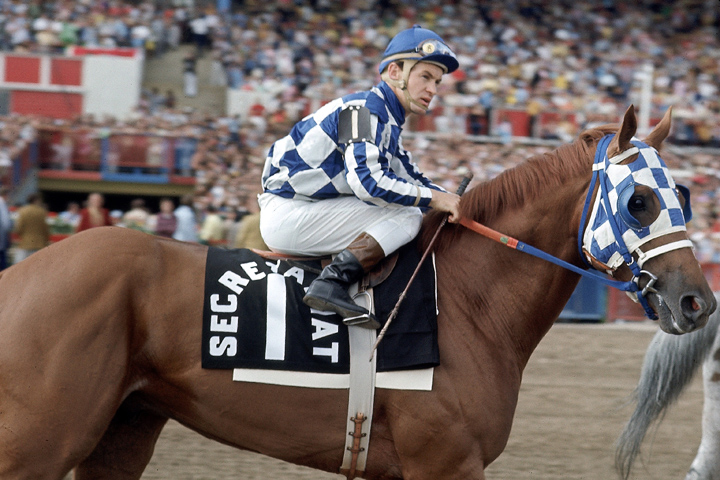 HorseRacing01.JPG