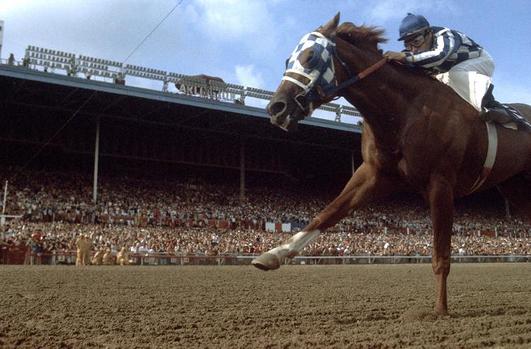 HorseRacing04.JPG