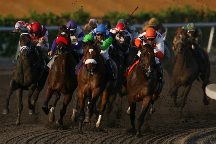 HorseRacing05.JPG