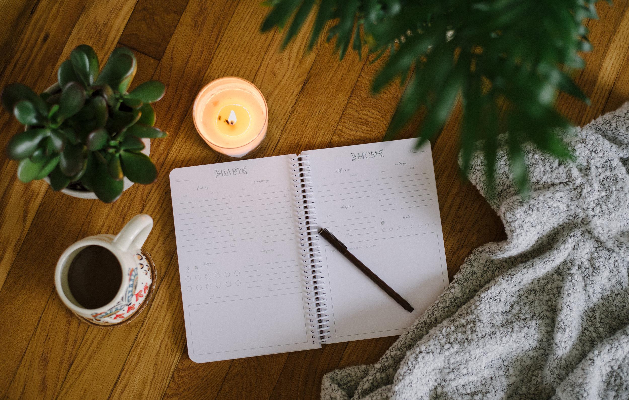 Duo Diary Postpartum Journal.jpg