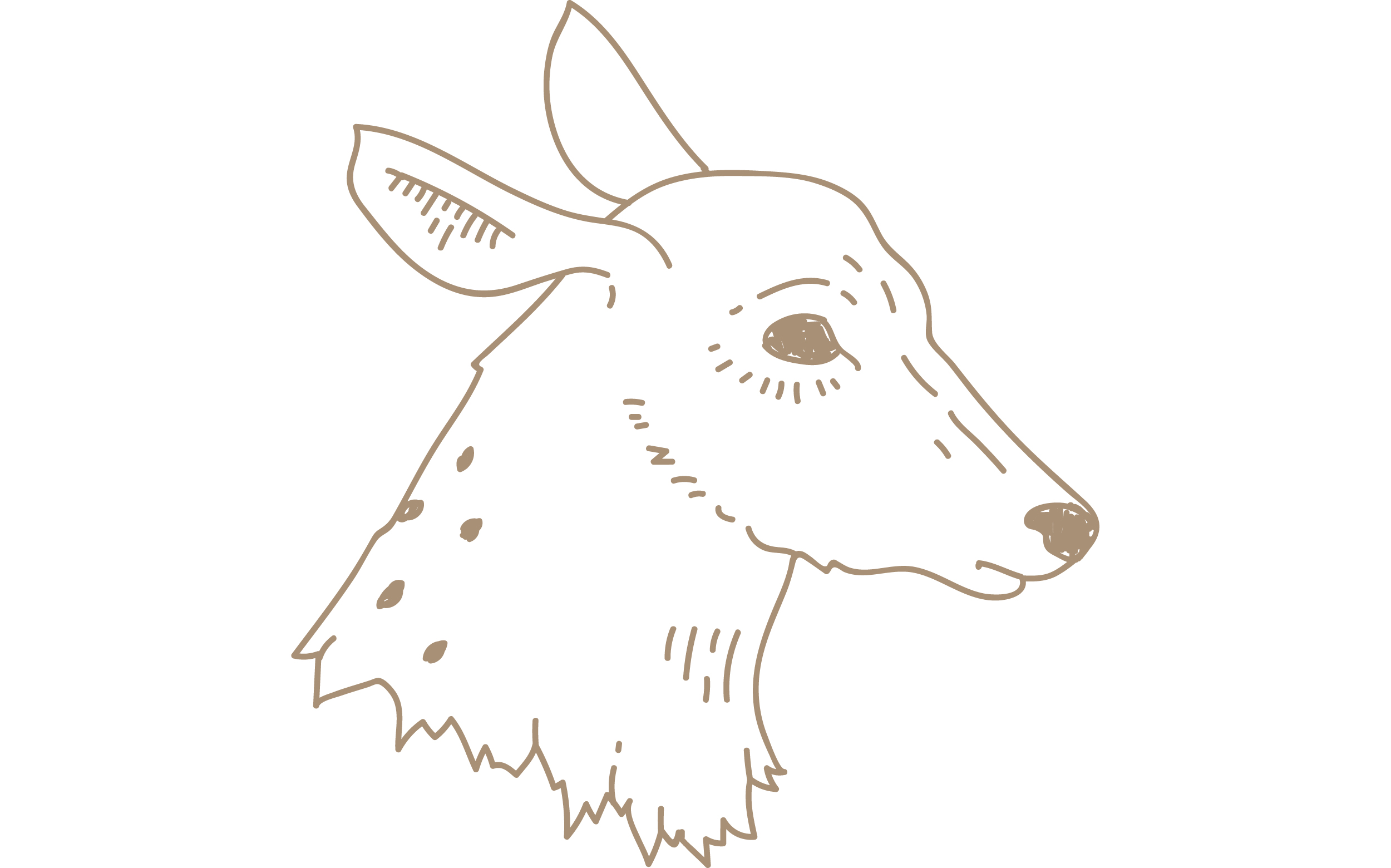 brown-deer-head-blog.png
