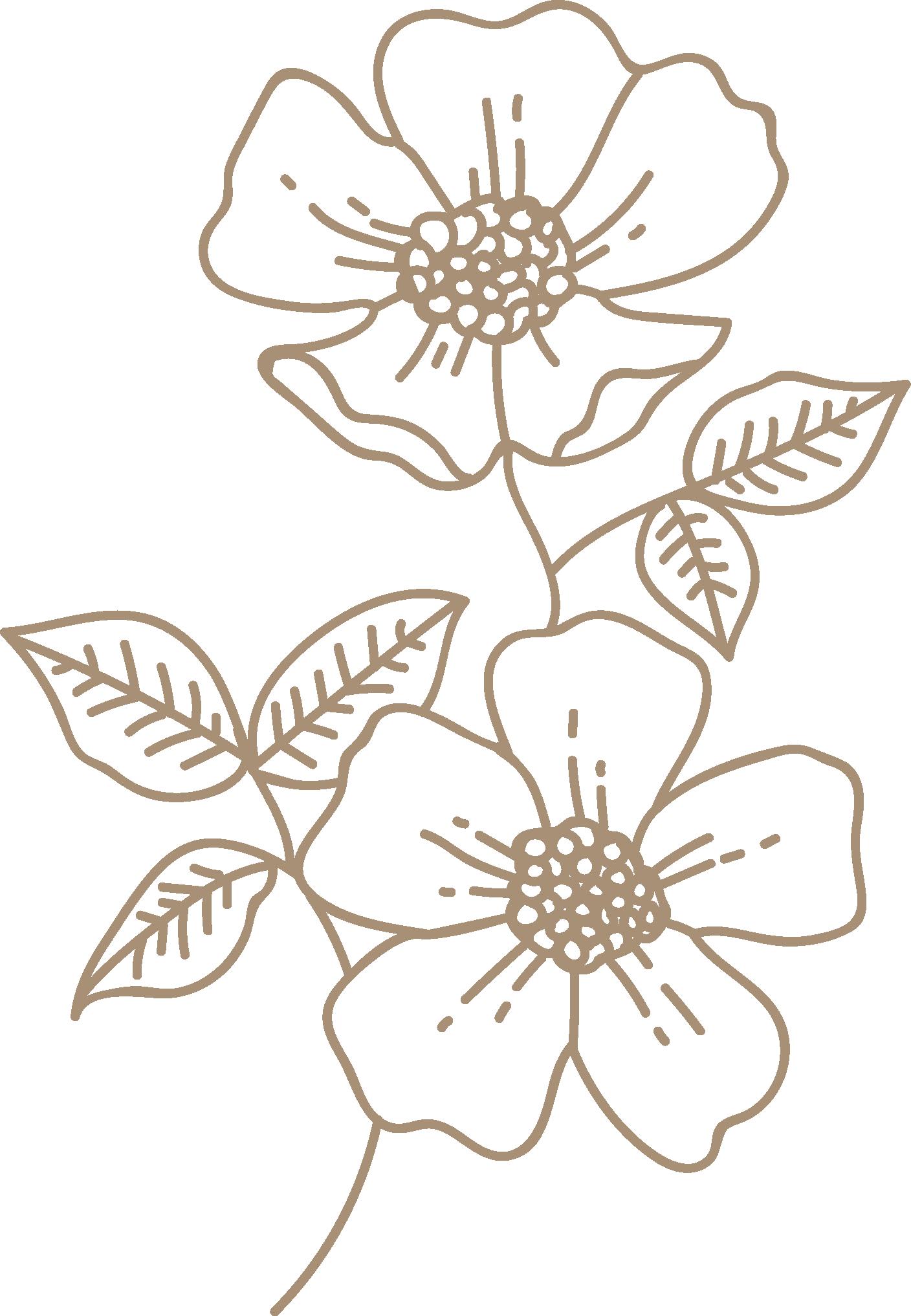 brown-wild-rose.png