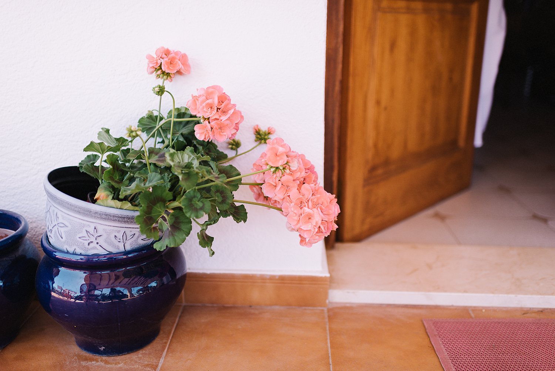 european-wedding-spanish-wedding-photographer-destination-wedding-photographer-from-toronto-ryanne-hollies-photography-valencia-villa-groom-getting-ready-details-tropical-flowers-minimalist-details.jpg