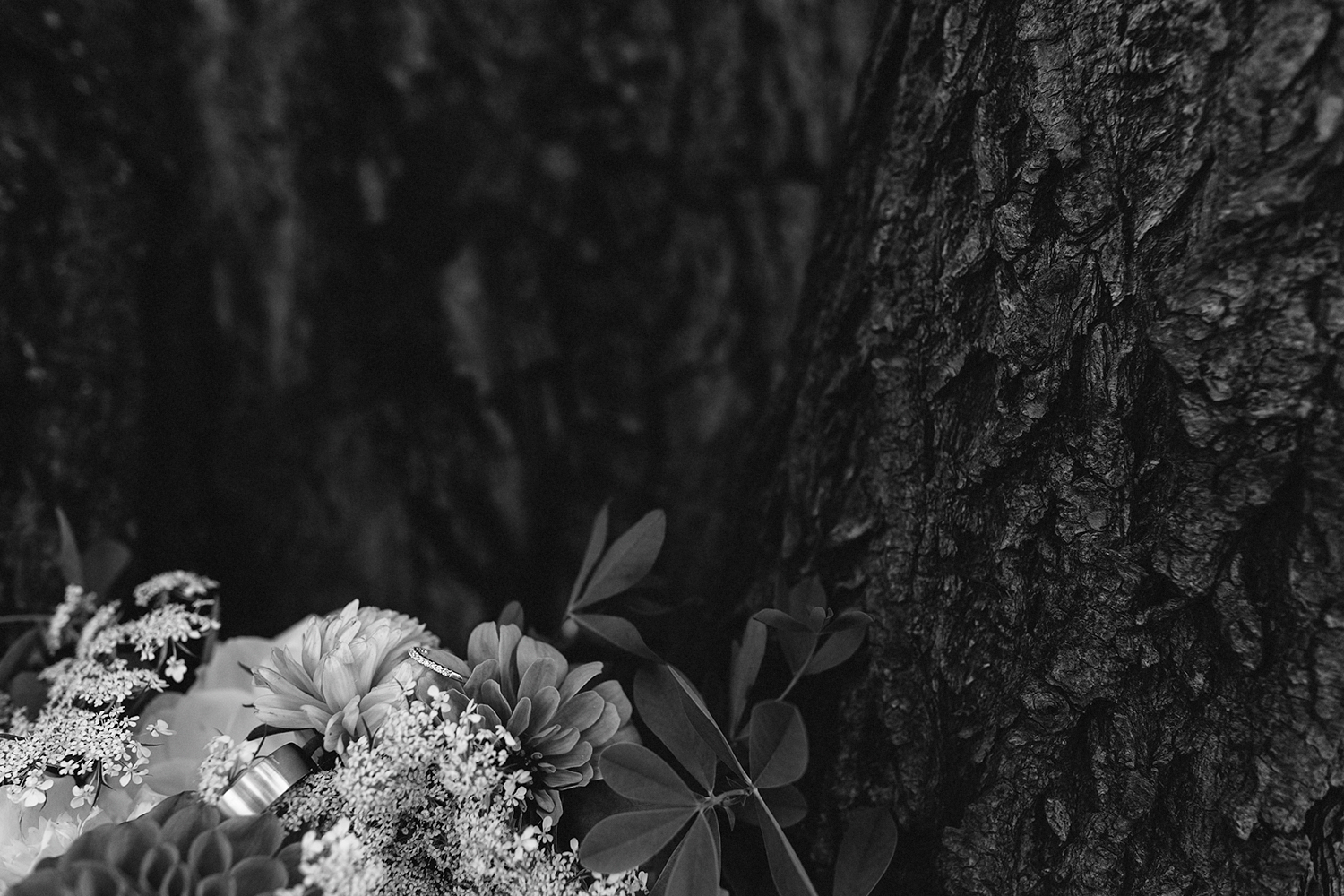 Best-Toronto-Wedding-Photographers-Photojournalistic-Wedding-Photography-in-Toronto-Ryanne-Hollies-Photography-candid-documentary-bradford-family-farm-rustic-venue-inspiration-details-flowers-with-wedding-bands-in-tree.jpg