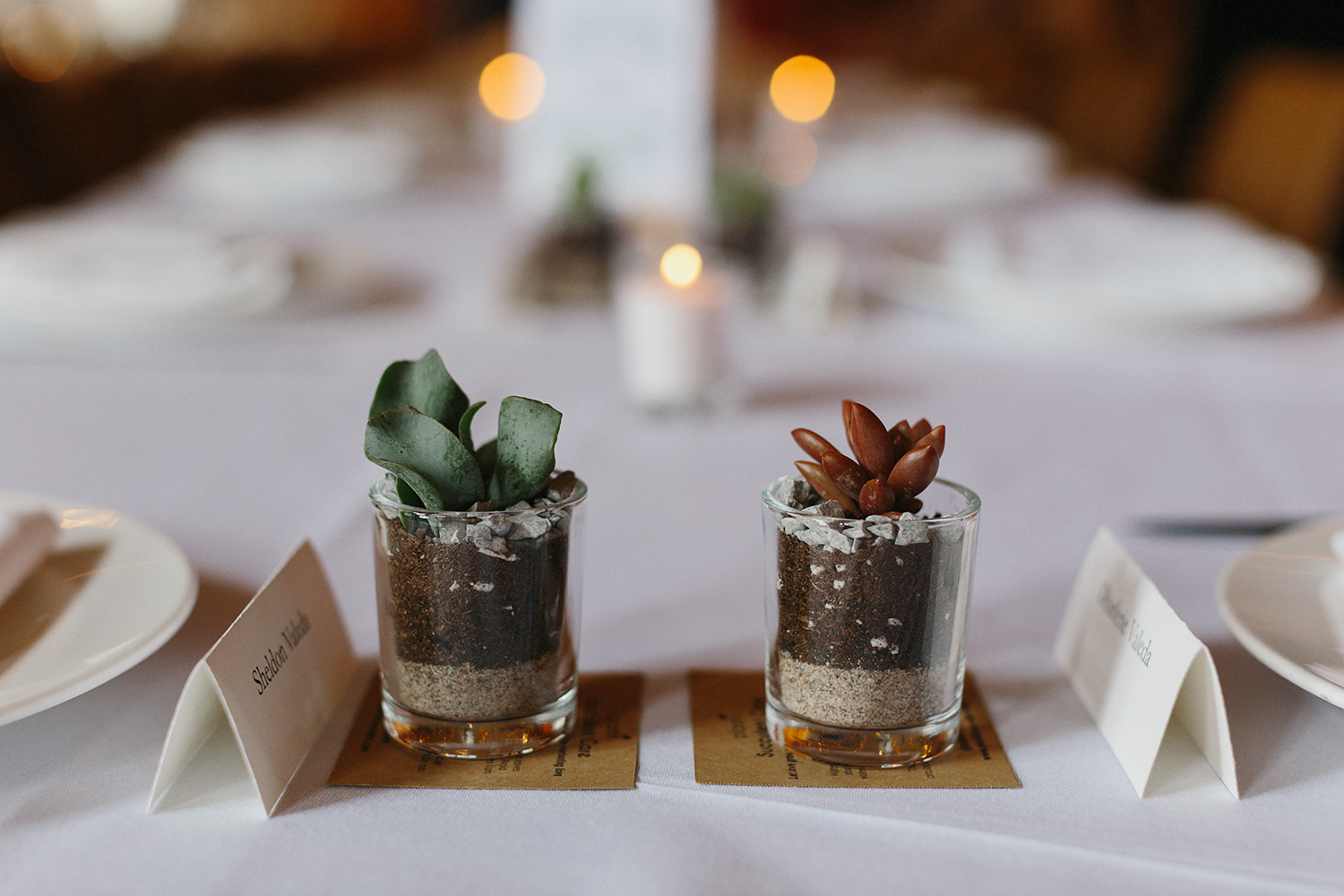 Best-Wedding-Photographers-in-Toronto-Downtown-Urban-Gladstone-Hotel-Venue-Inspiration-Top-Venues-in-Toronto-boutique-hotel-candid-documentary-brunch-wedding-reception-succulents-favours.jpg