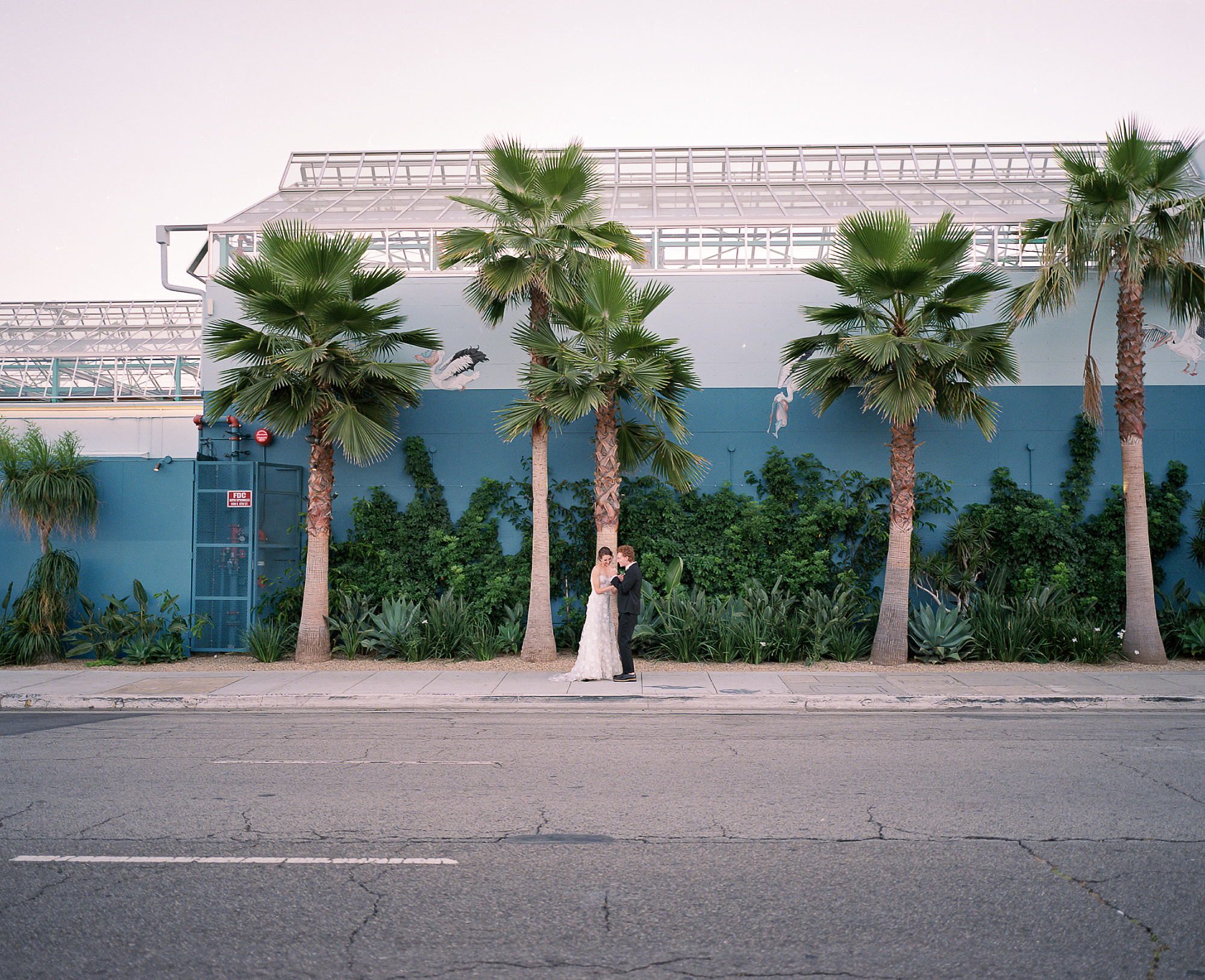 153-Los-Angeles-California-2019-Jackie-Skylar-Wedding-Portra800_1.JPG