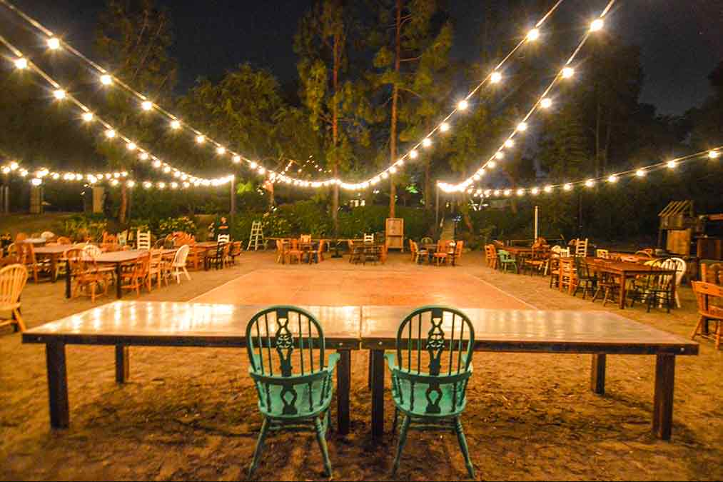 Market-Lights-String-Lights-in-backyard-wedding-outdoors-lighting.jpg
