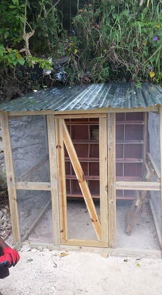 new chicken coop.JPG