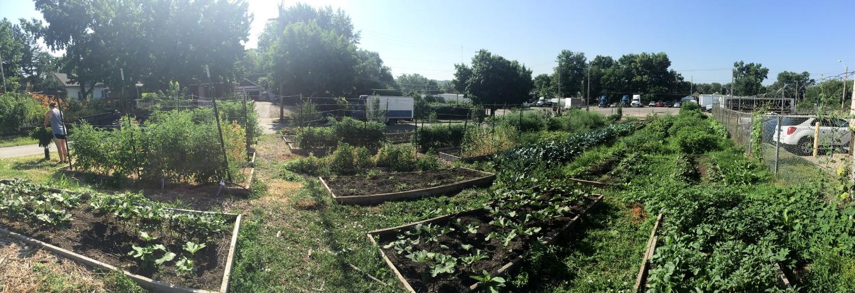 Urban Farming Guys Garden