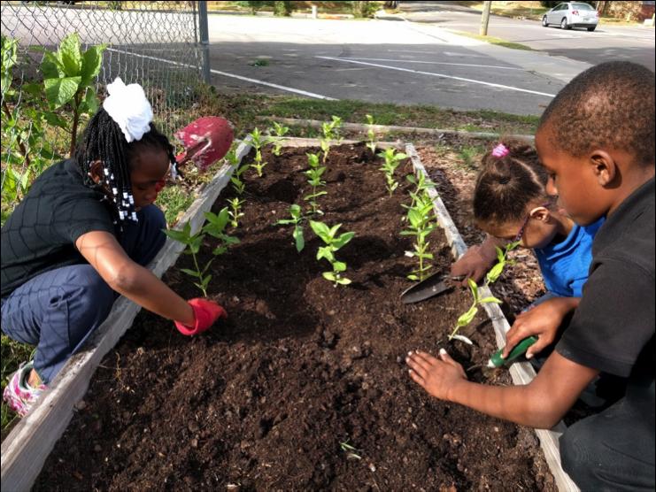 birmingham-urban-garden-kids-planting