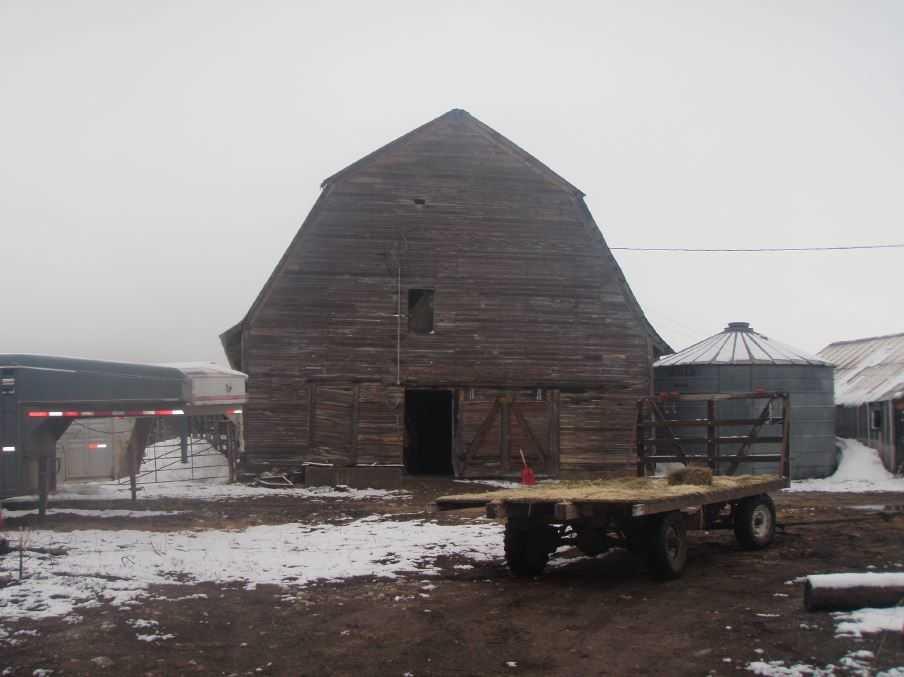 Preston Cow Barn