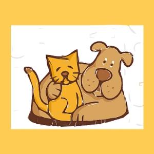 catanddog.jpg