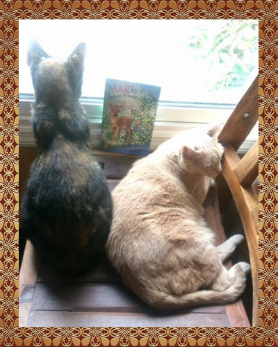 bookish-cats-ignore.png