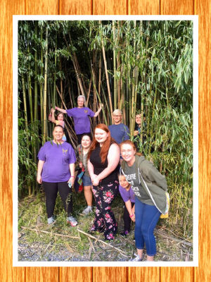 Shindig-clogging-random-bamboo-forest-NC.png