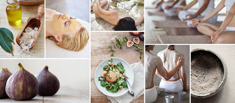 Spa Wellness' beautiful branding