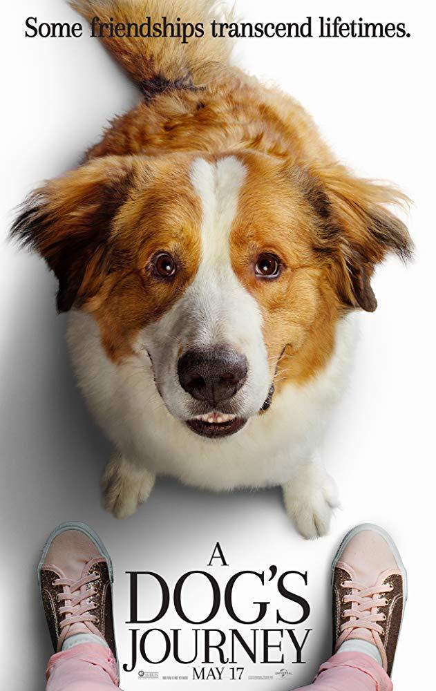 Dogs Journey'.jpg