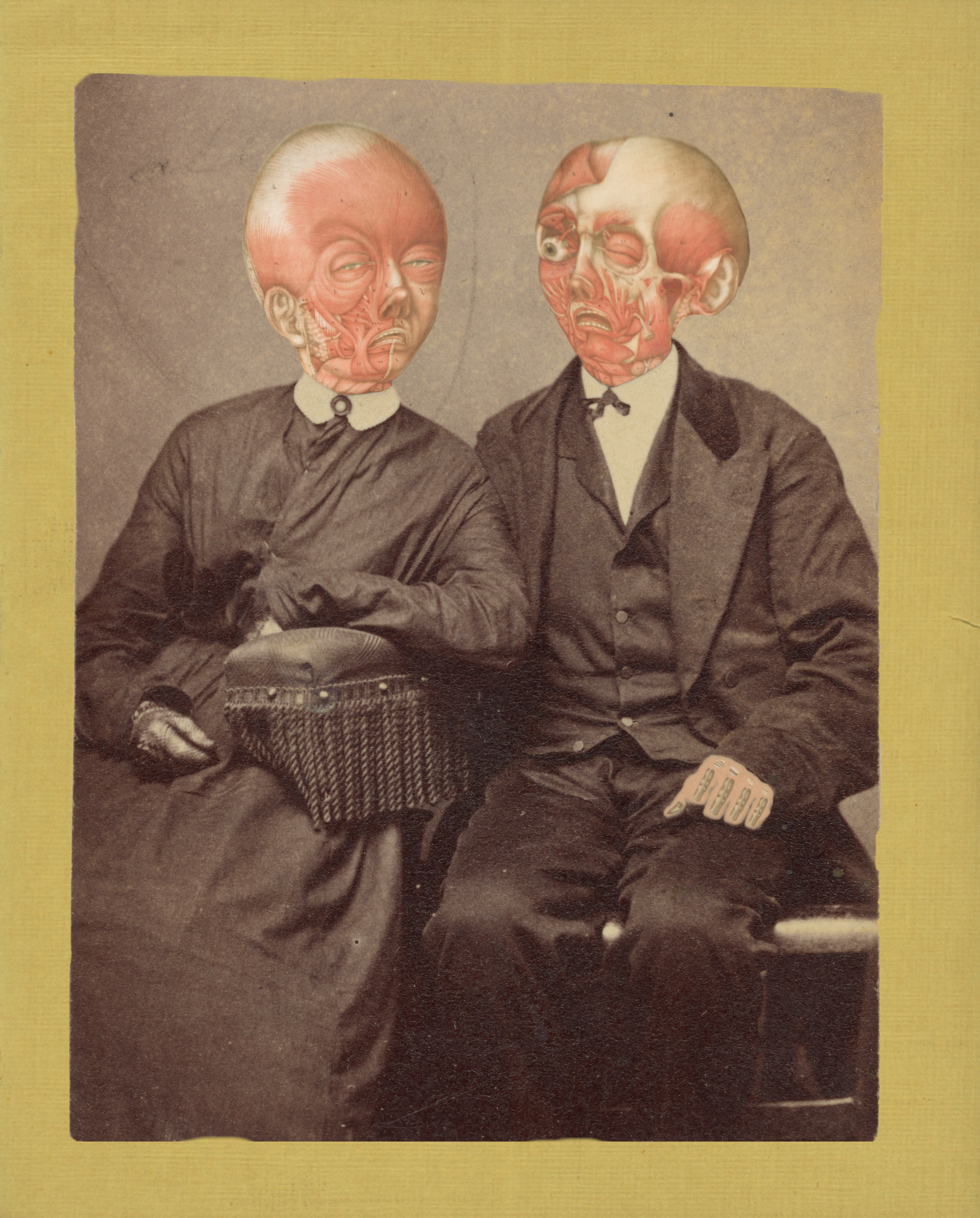 The Anatomical Couple