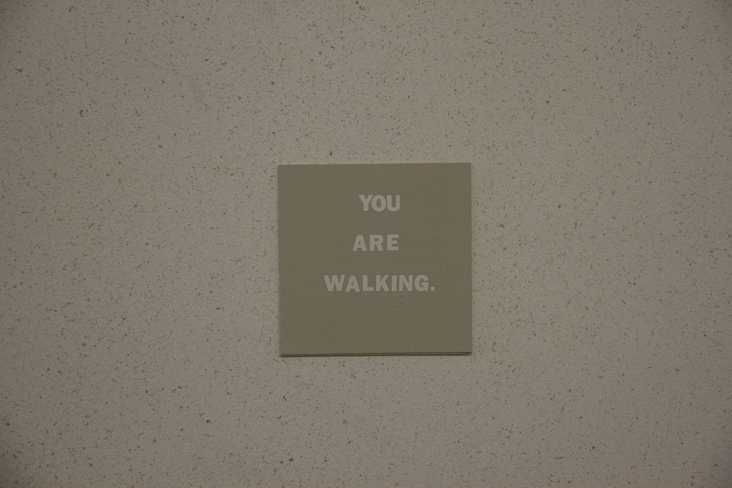 You Are Walking.jpg