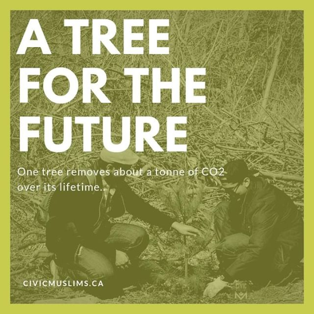 🌳 Let's help the environment together! Join us on Saturday, September 28th as we help @mississaugapf with their goal to plant One Million Trees. 🌳 ⠀ ⠀ Click the link in our bio to join us! Spaces are limited. ⠀ .⠀ .⠀ .⠀ #CivicMuslims #DoGood #TreePlanting #Sustainability #Ecological #GreenFootprint #GlobalWarming #ClimateChange #Volunteering #Mississauga #Volunteer #SocialGood #Community #SocialImpact #GivingBack #MakeaDifference
