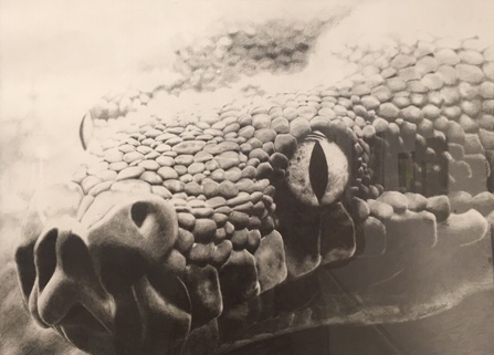 Aria Dhanilal - Grade 9 - 'Snake'