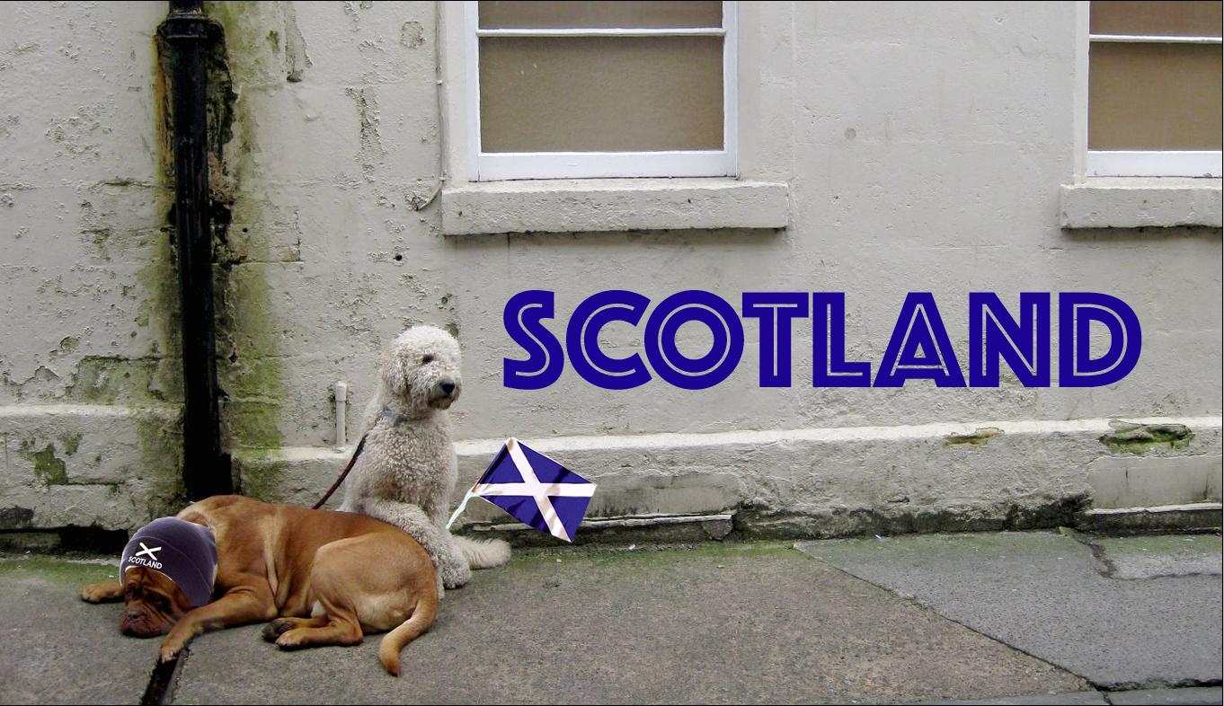 scotlandflyer.jpg