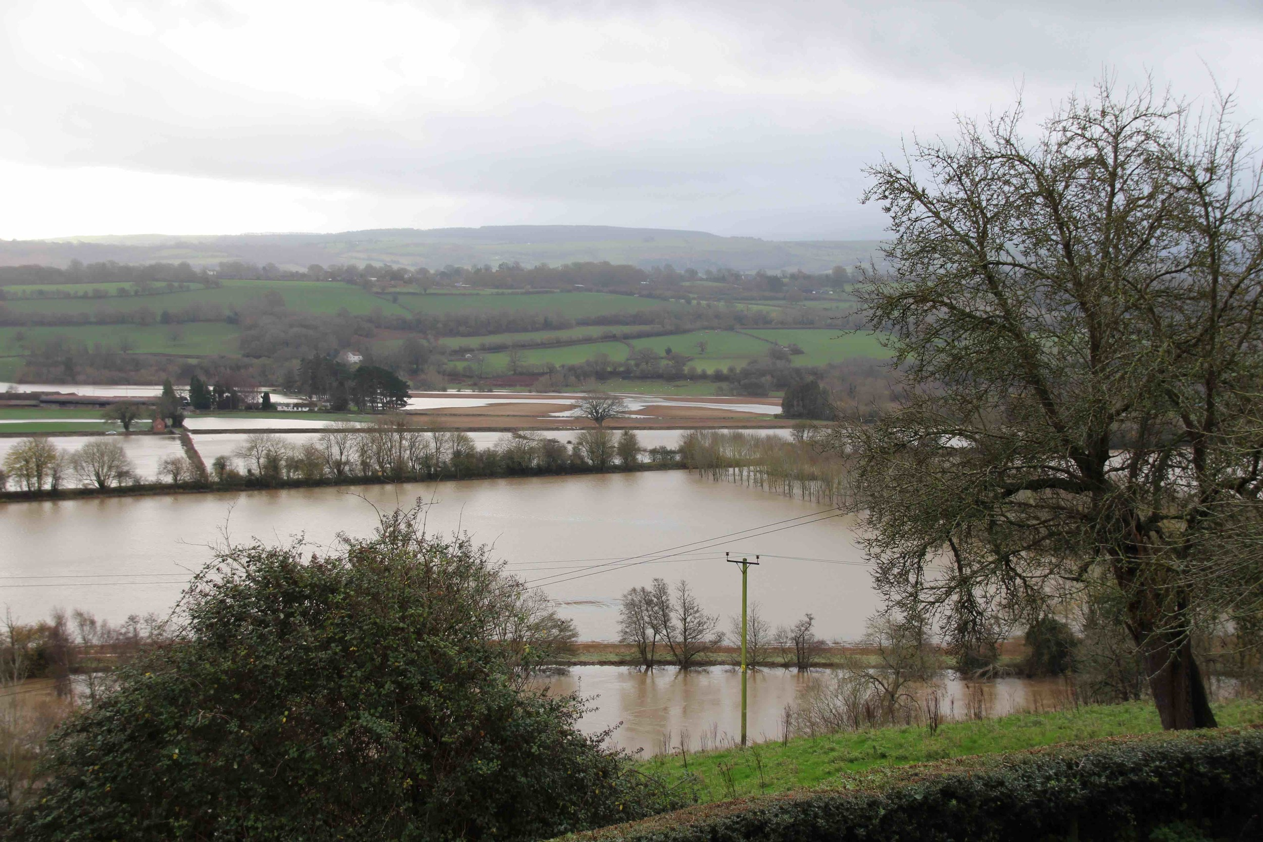 The River Wye in flood. Behind me was a field of sheep.