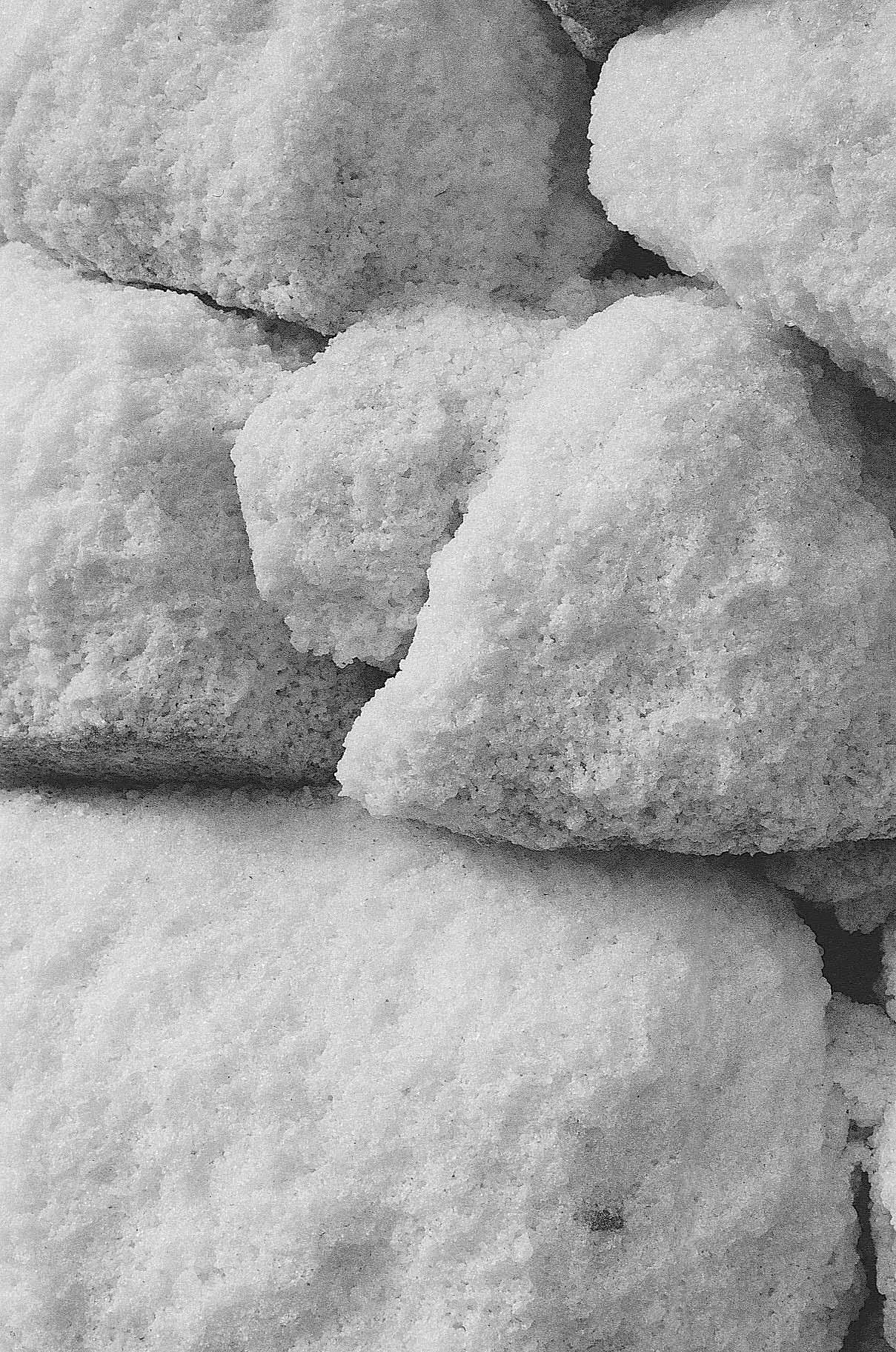 Salt Column - Anna Macleod 3.jpg