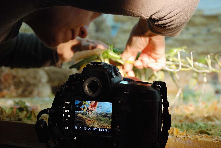Making-of photo's