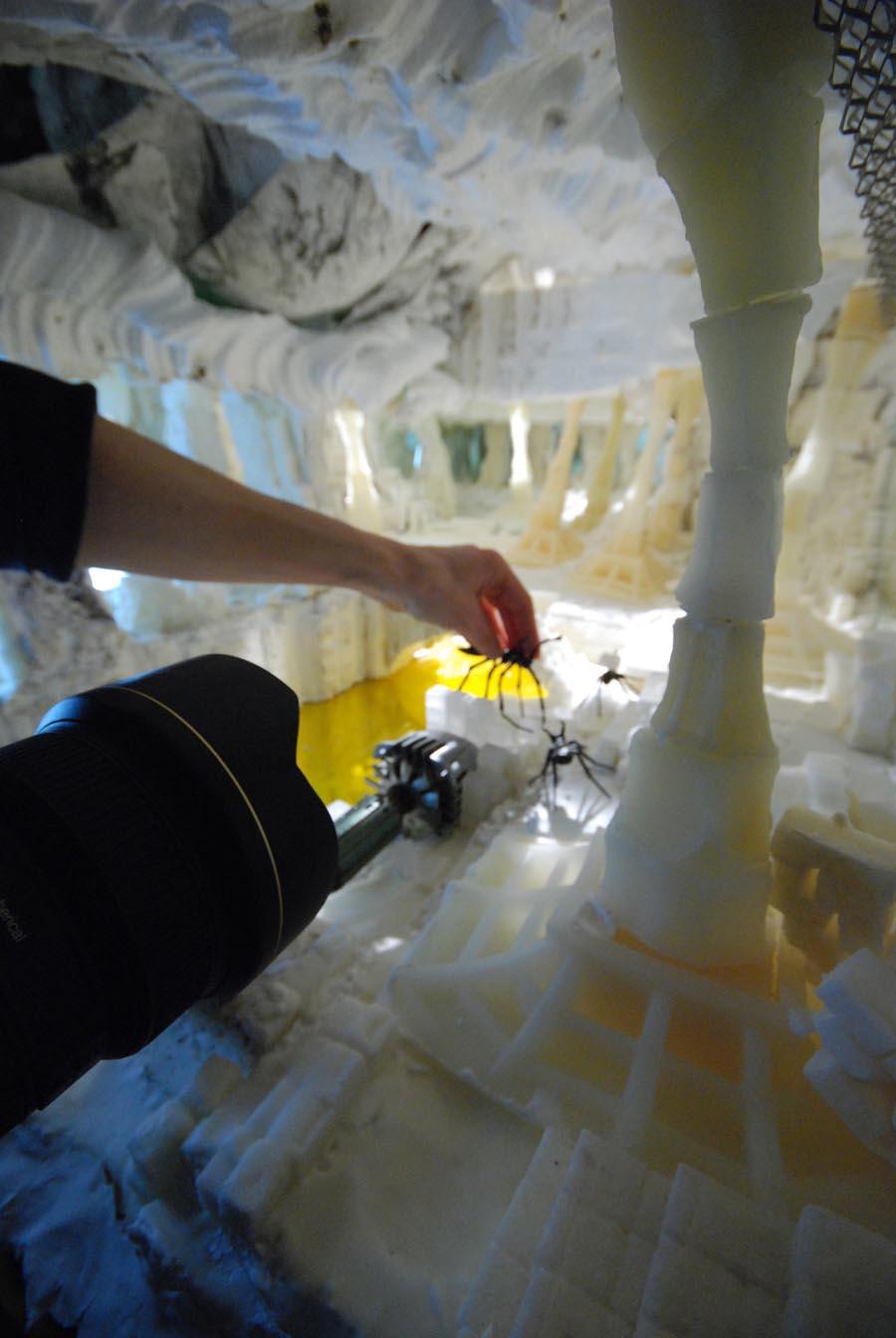 The sugar cave 4.jpg