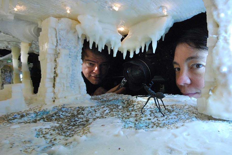 The sugar cave