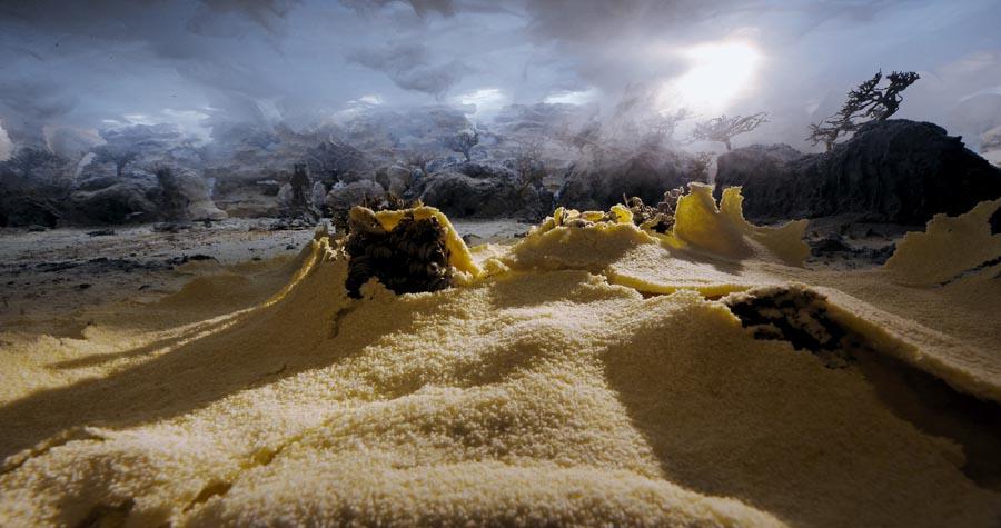 The desert still 3.jpg