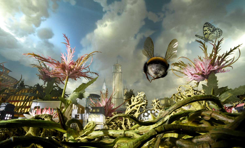 Bumble bee city