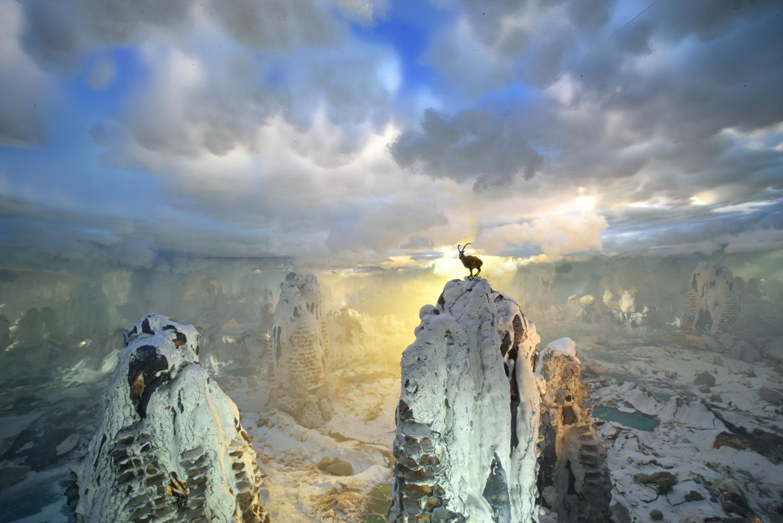 4. Moutain Goat Sunset