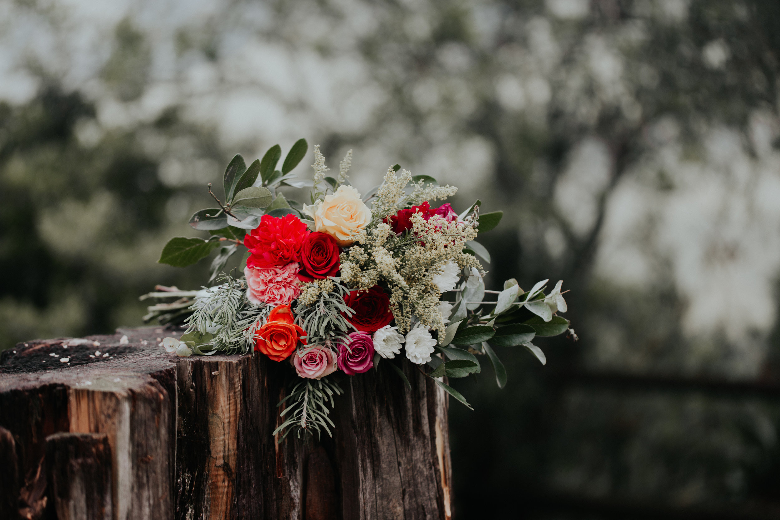 Kristi Smith Photography_Andrew&Louise_ Wedding Photographer 15.jpg