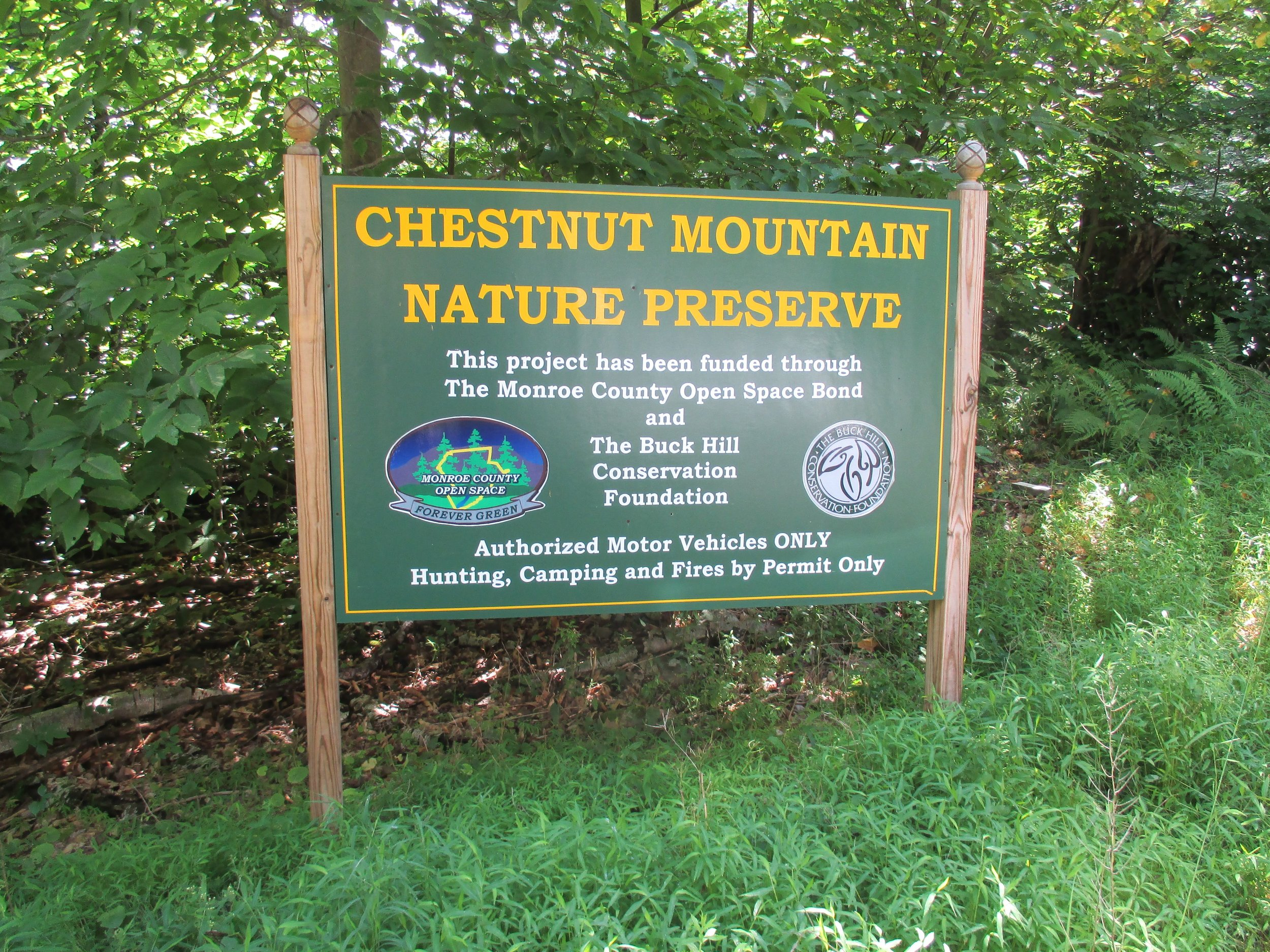 CHESTNUT MOUNTAIN - Chestnut Mountain trails feature educational signs about forest regeneration. The 2.8 mile Blue Trail has a scenic vista at the overlook. The 1.2 mile Red Trail takes hikers shows characteristics of a healthy forest.