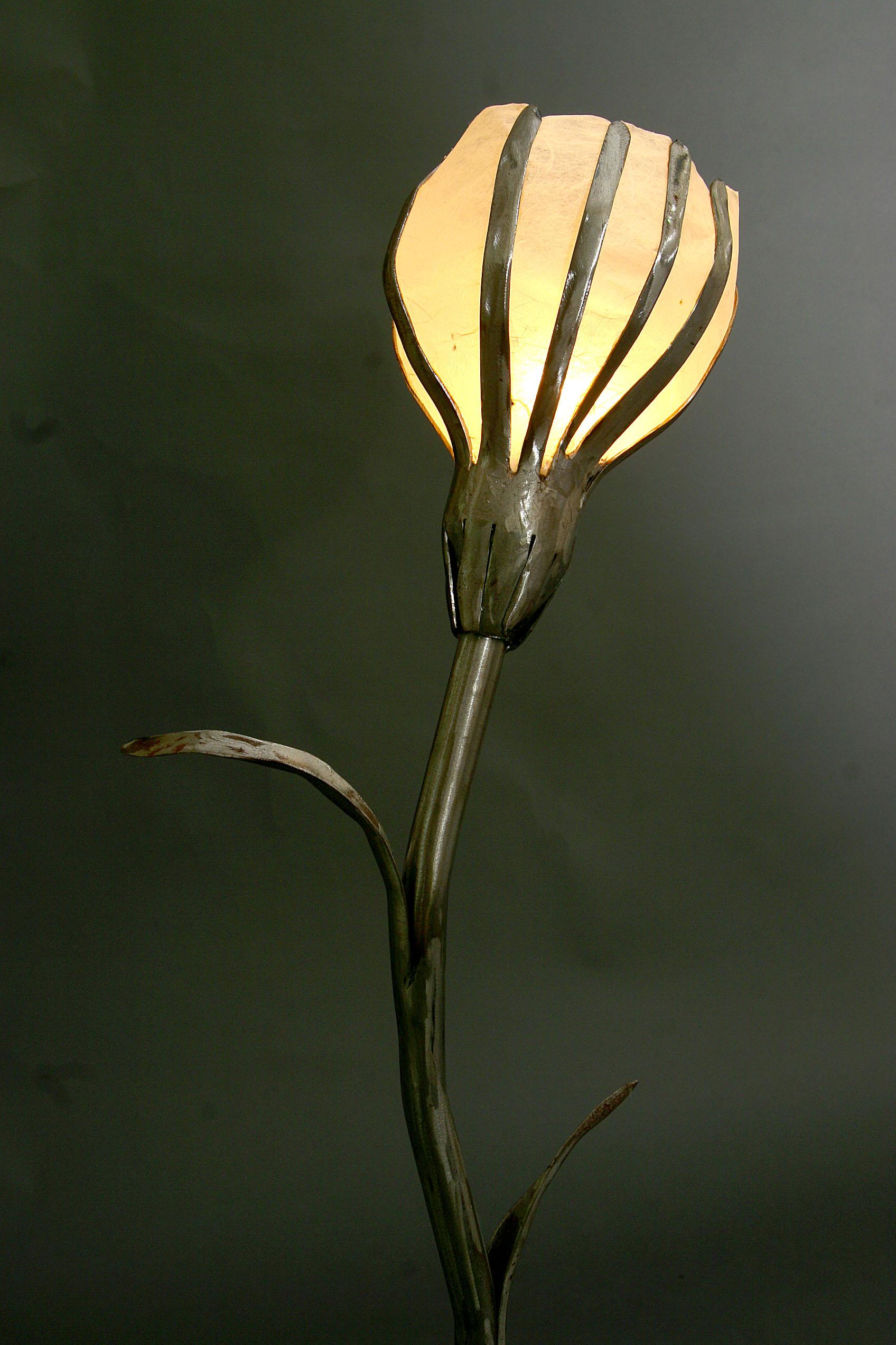 bulblamp_top.jpg