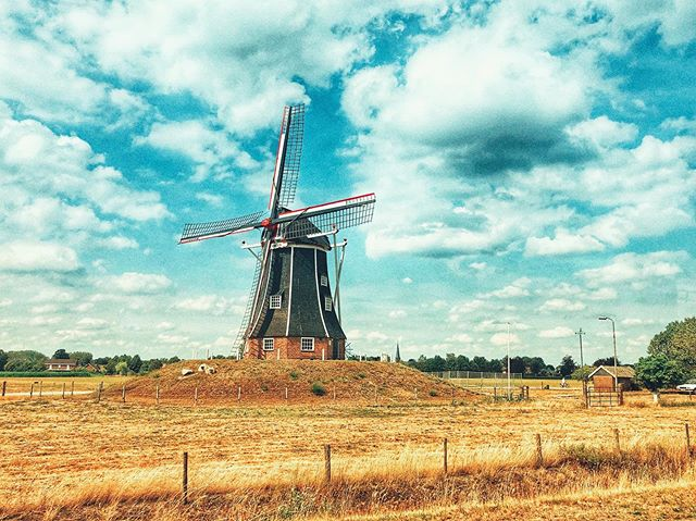 24 hours in Holland. Tilting at windmills...