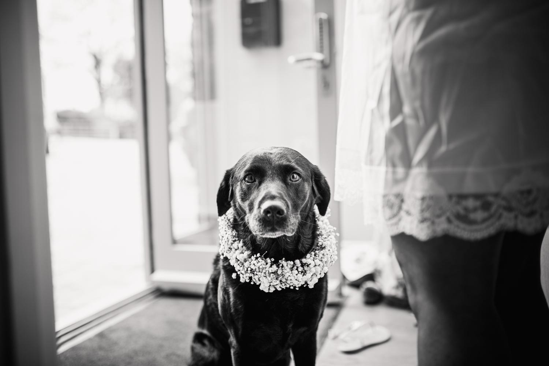 Kathryn Clarke Mcleod Wedding Photography-12.jpg