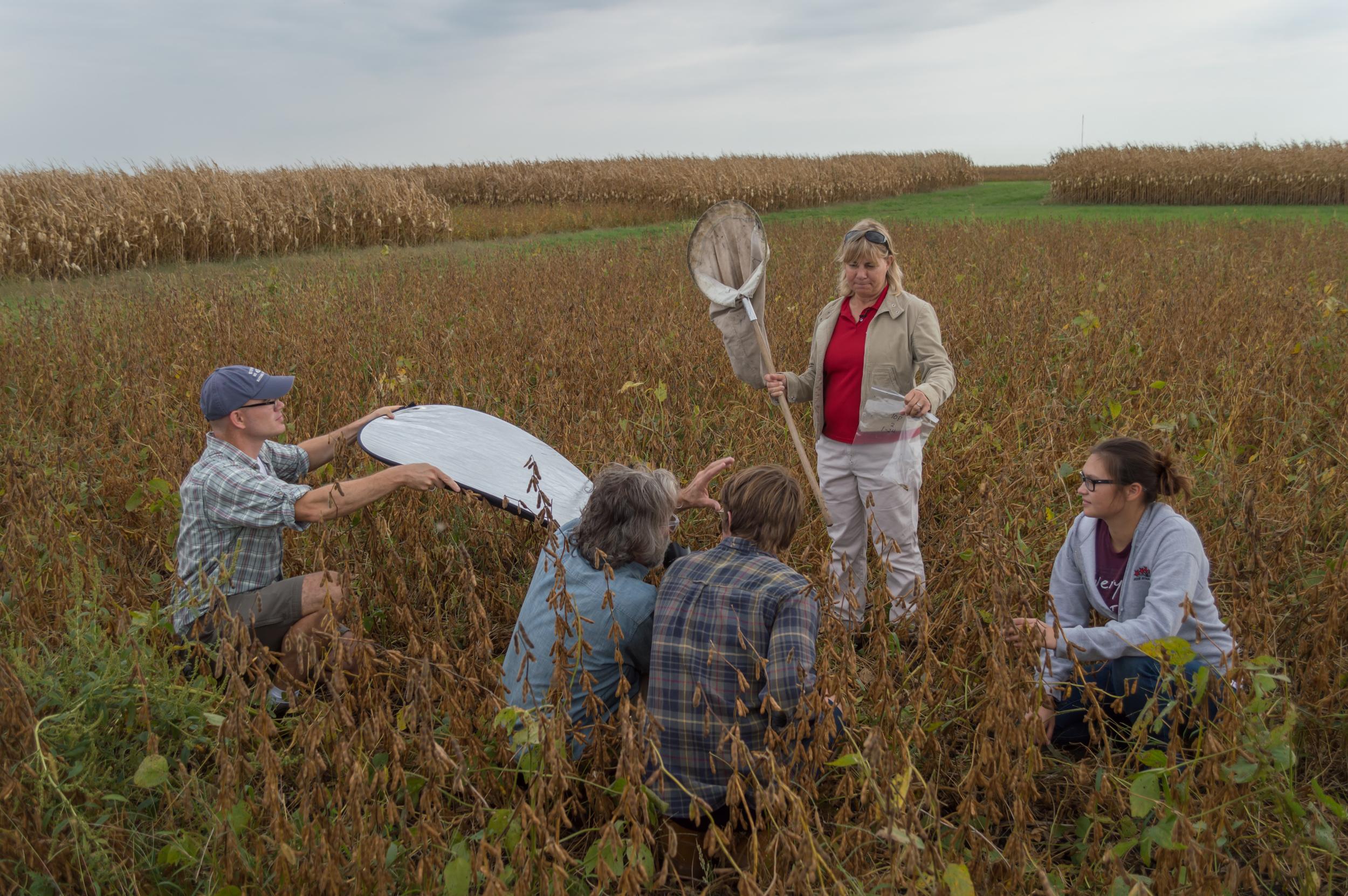 Field Studies: ISU Research Farm