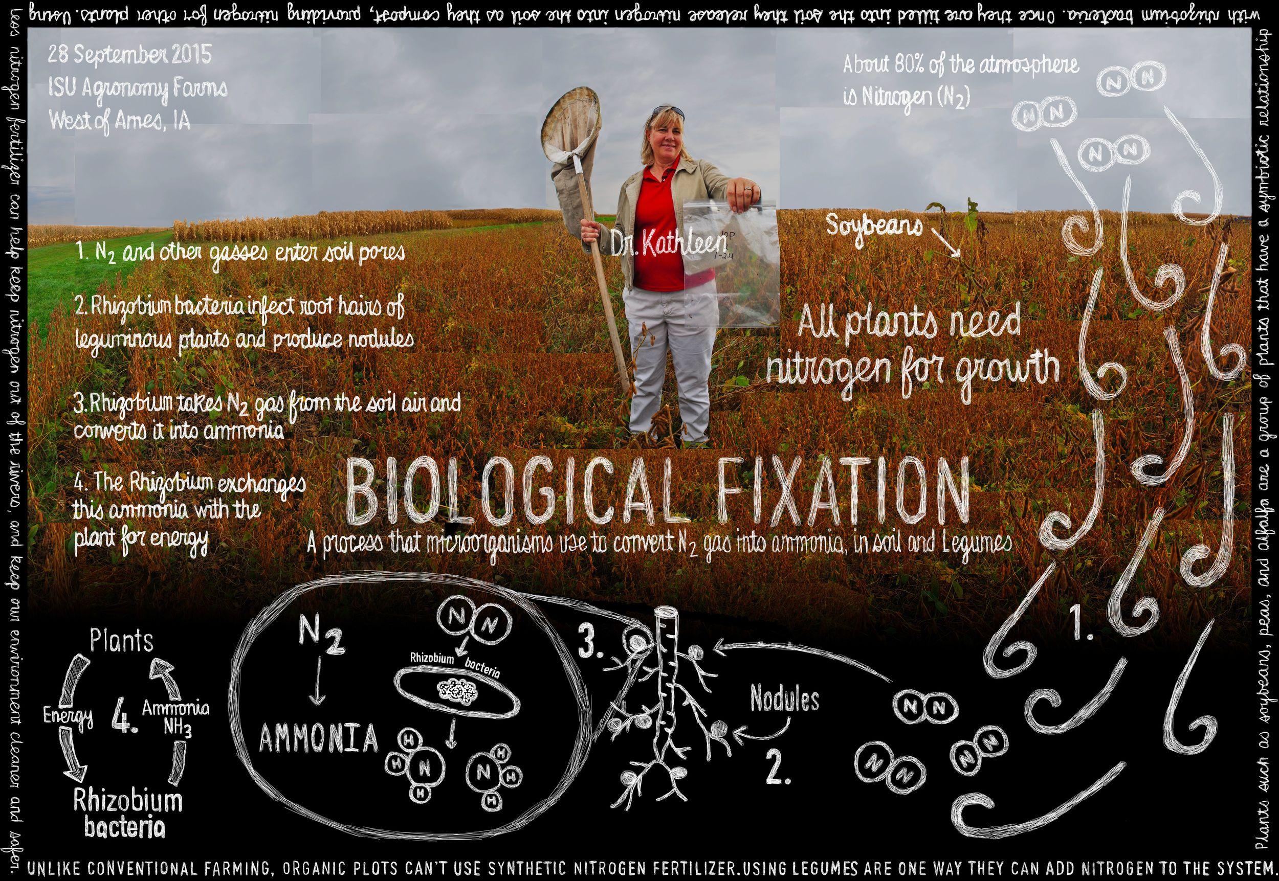 PL_Ames_BIOLOGICALFIXATION_small.jpg