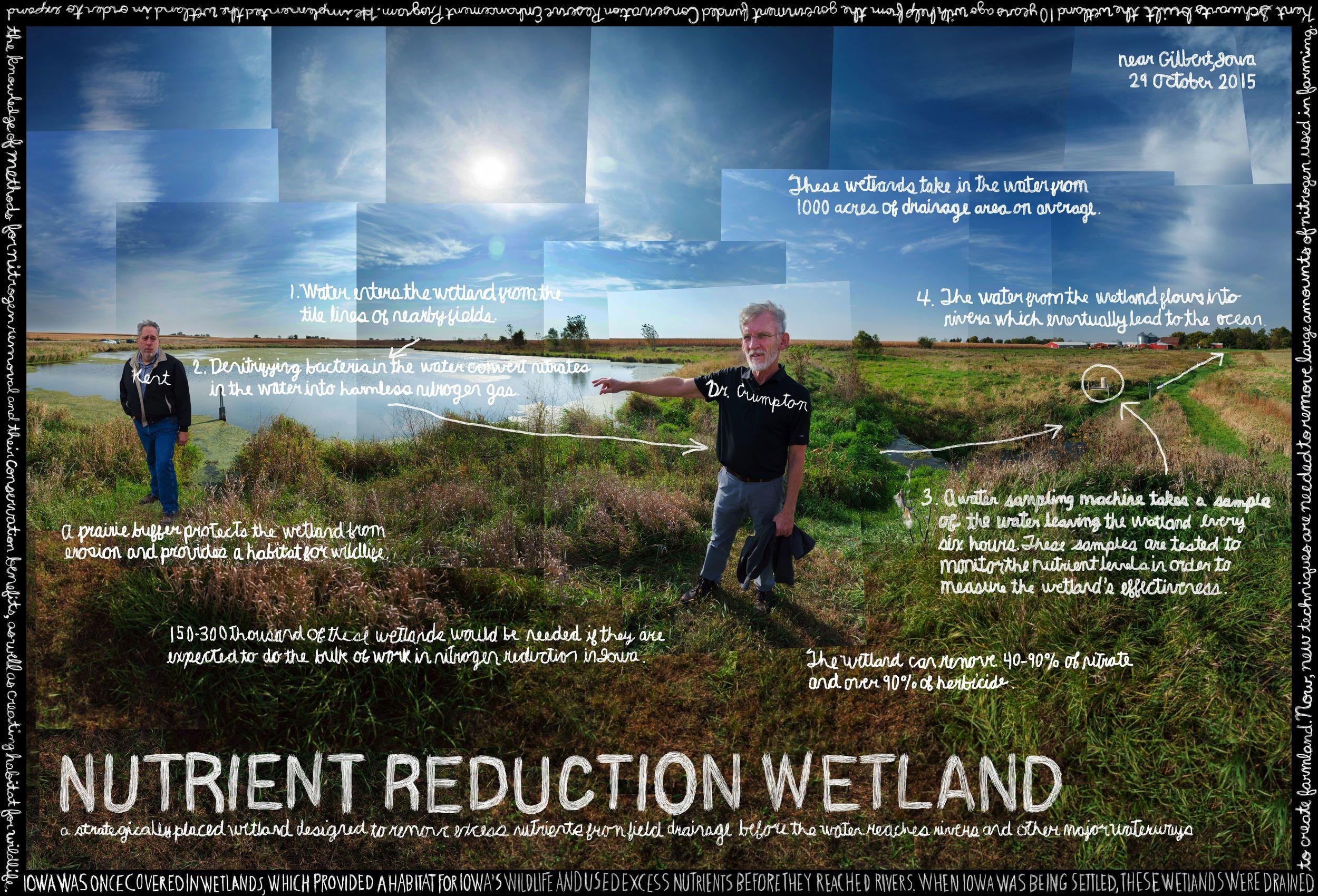 PL_Ames_NutrientReductionWetland_small.jpg