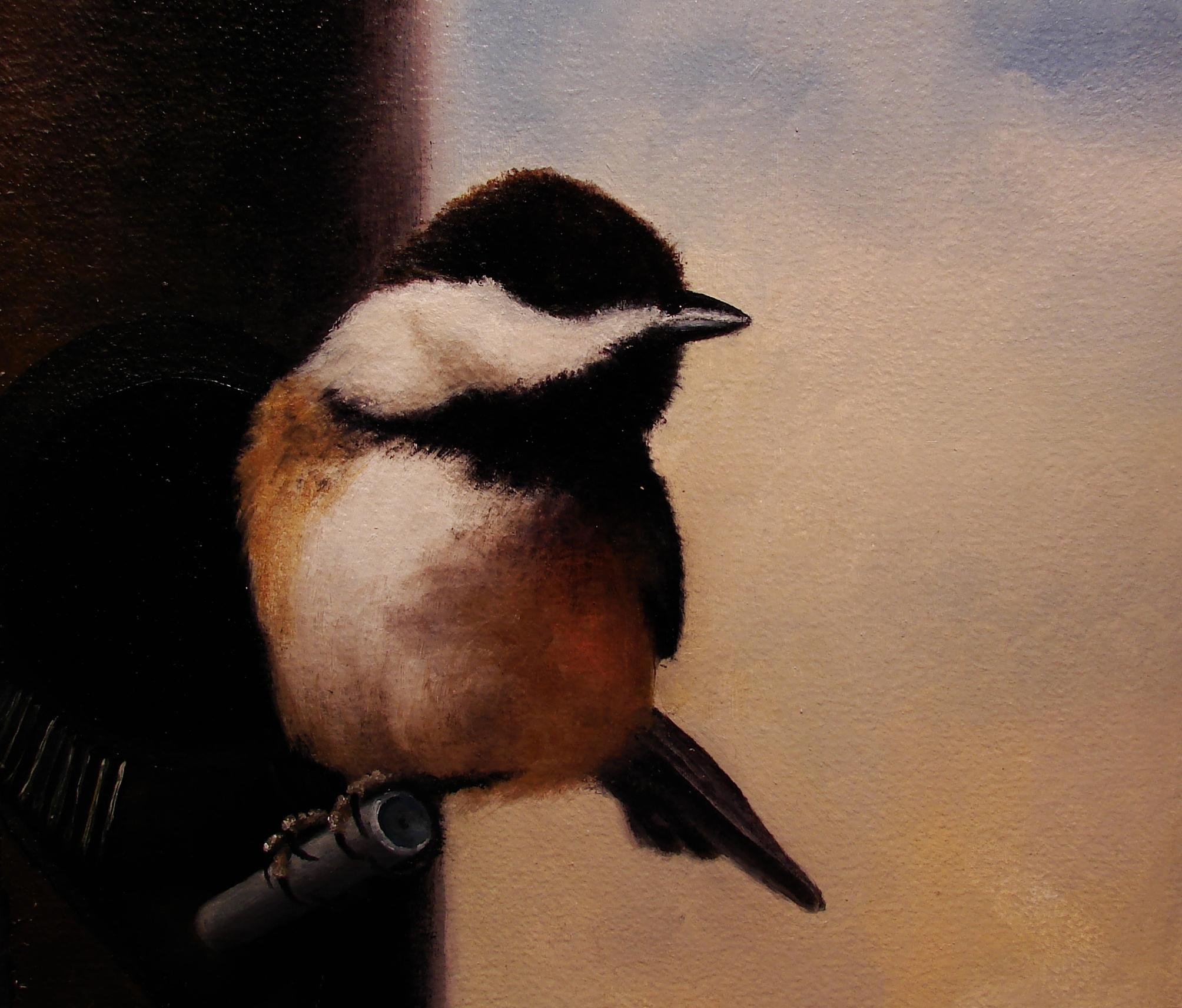 Chickadee II