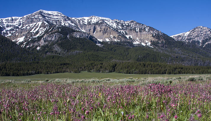 The west Centennial Mountains. Photo courtesy of the U.S. Fish and Wildlife Service.
