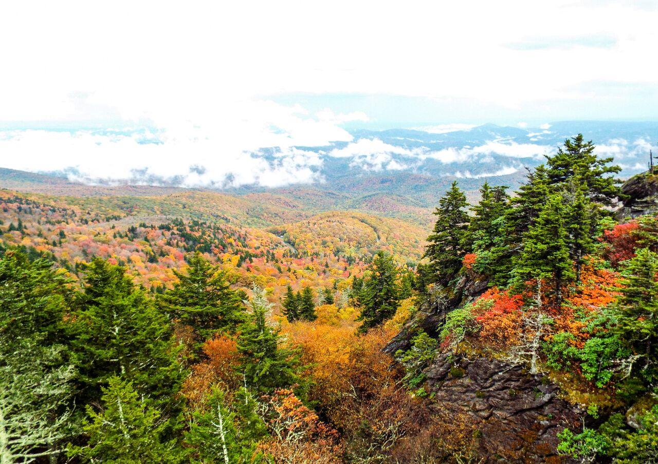 Fall Scenery_66_.jpeg