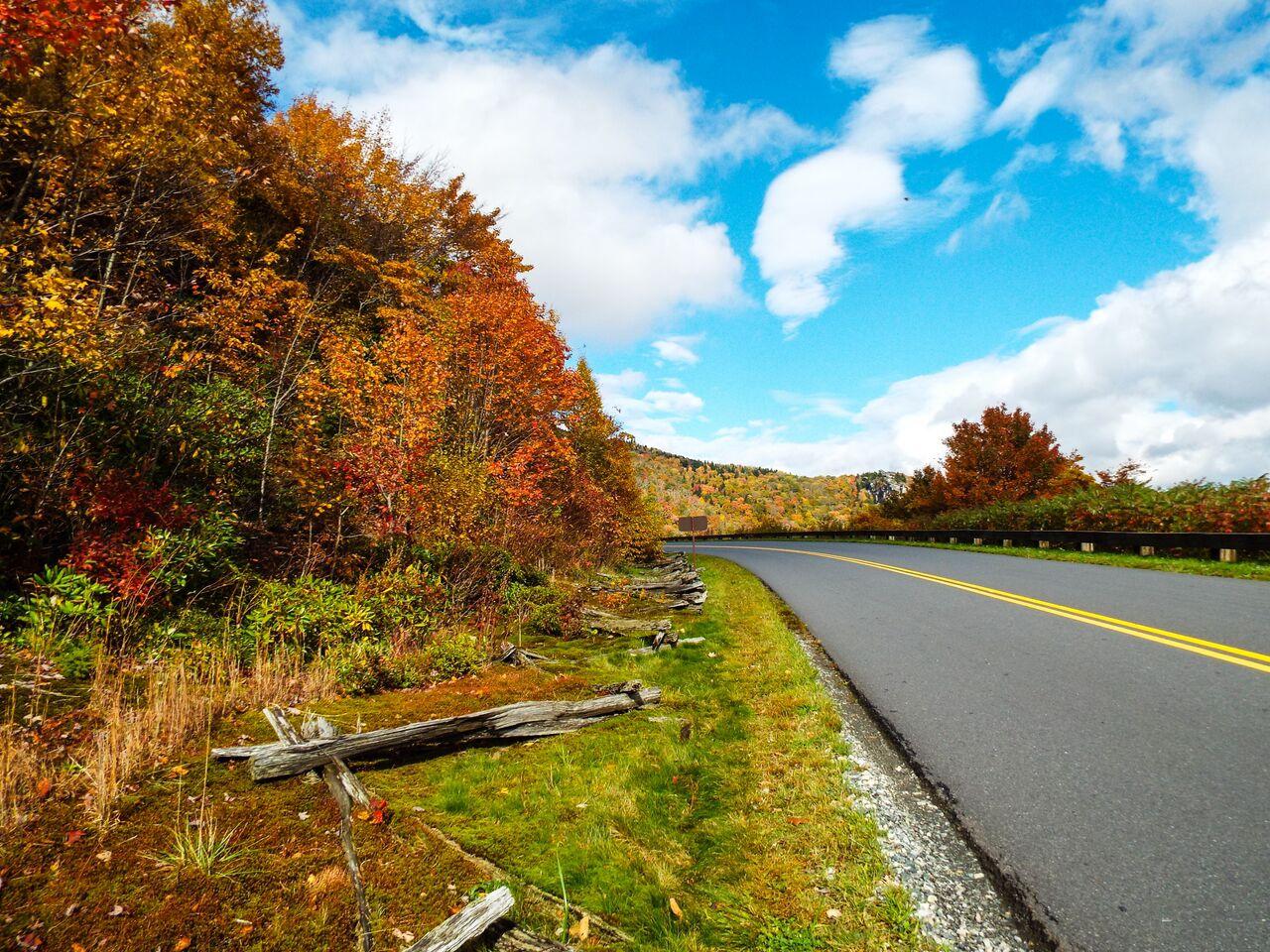 Fall Road_53_.jpeg