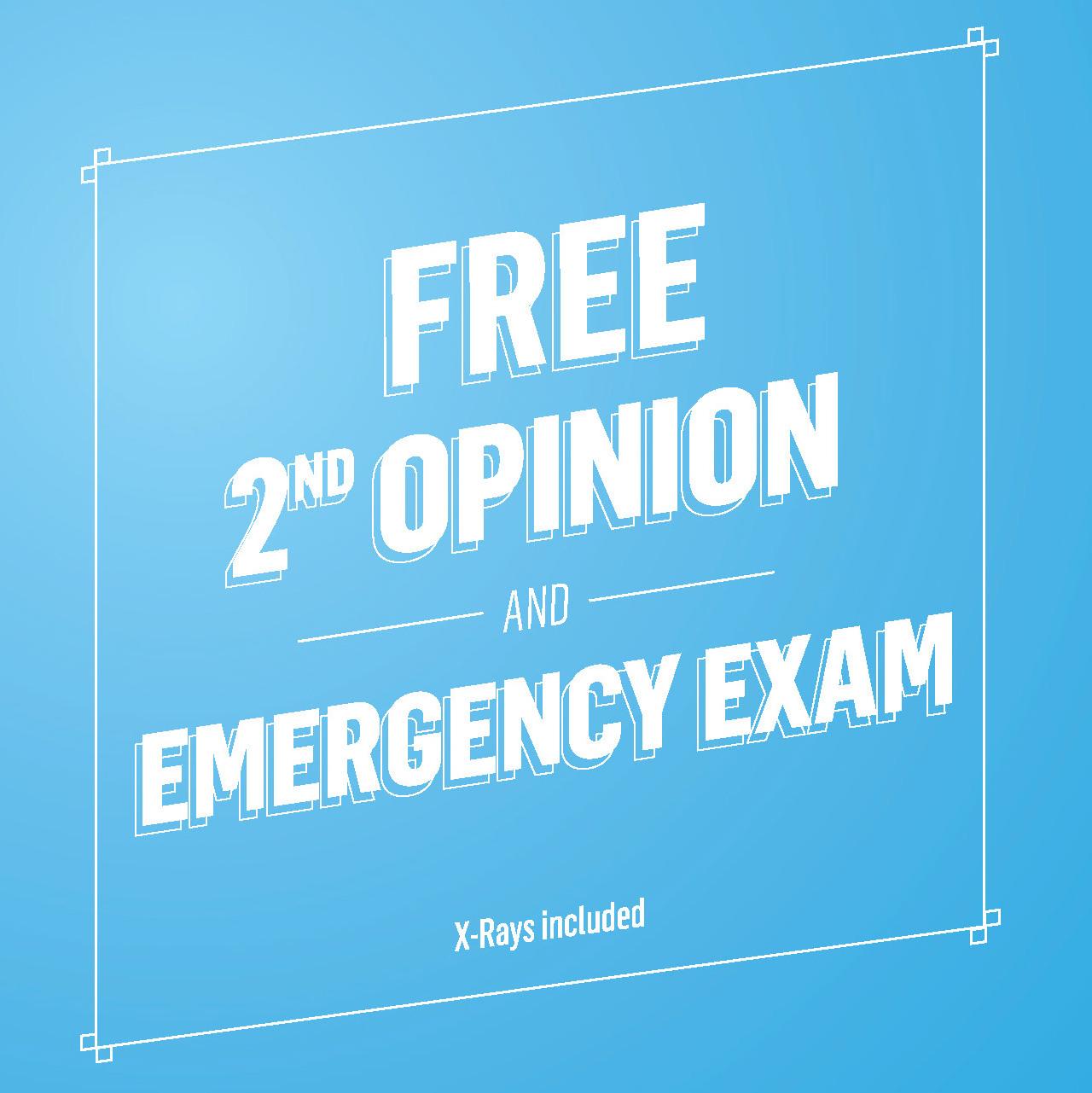 free_opinion_back-001.jpg