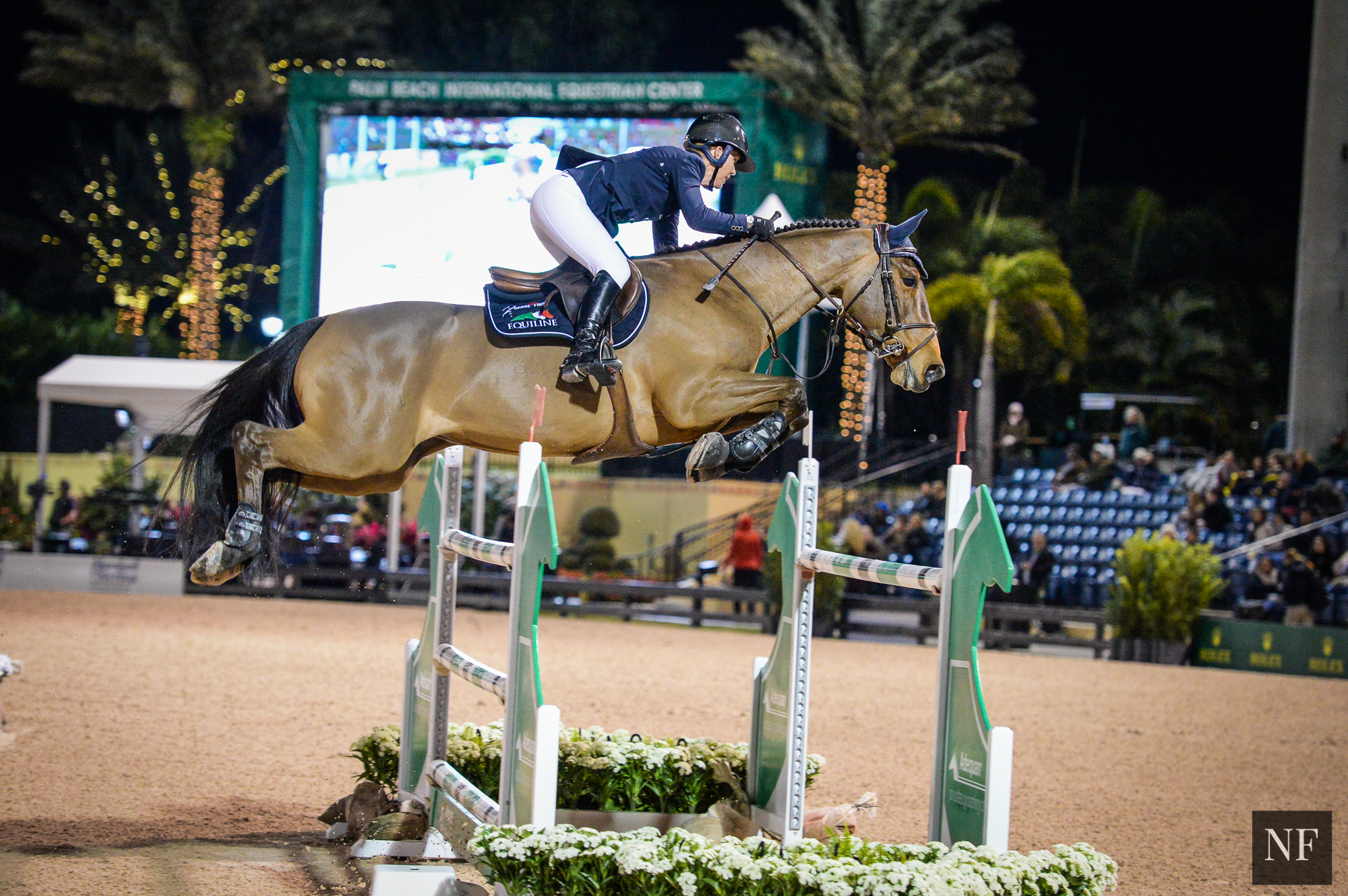 Lauren & Quick Study in the $86,000 Marshall & Sterling Insurance Grand Prix CSI2* at WEF 2016