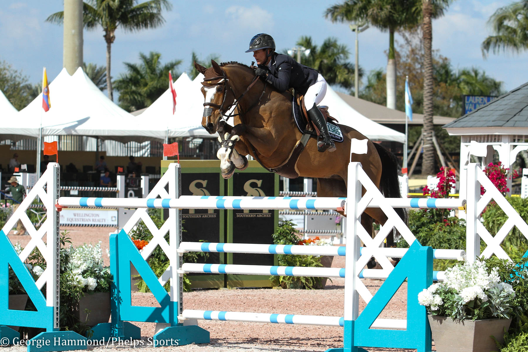 Lauren and Valinski S competing at the 2019 Winter Equestrian Festival